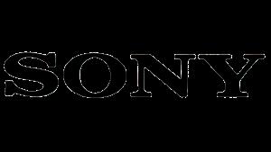 Sony Video Game Developer