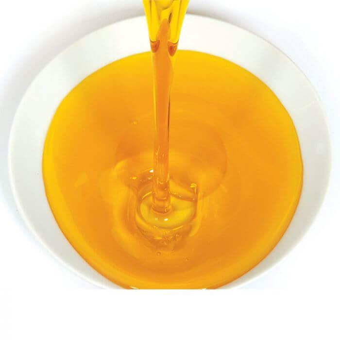 salmon oil brands