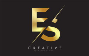 eS Skate Shoes Brand