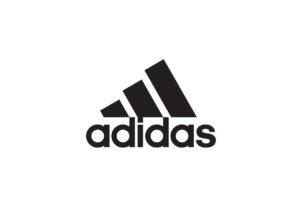 Adidas Skate Shoes Brand