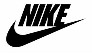 Nike Skate Shoes Brand